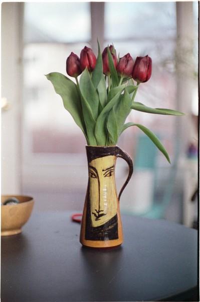 Tulips. Sekonic.